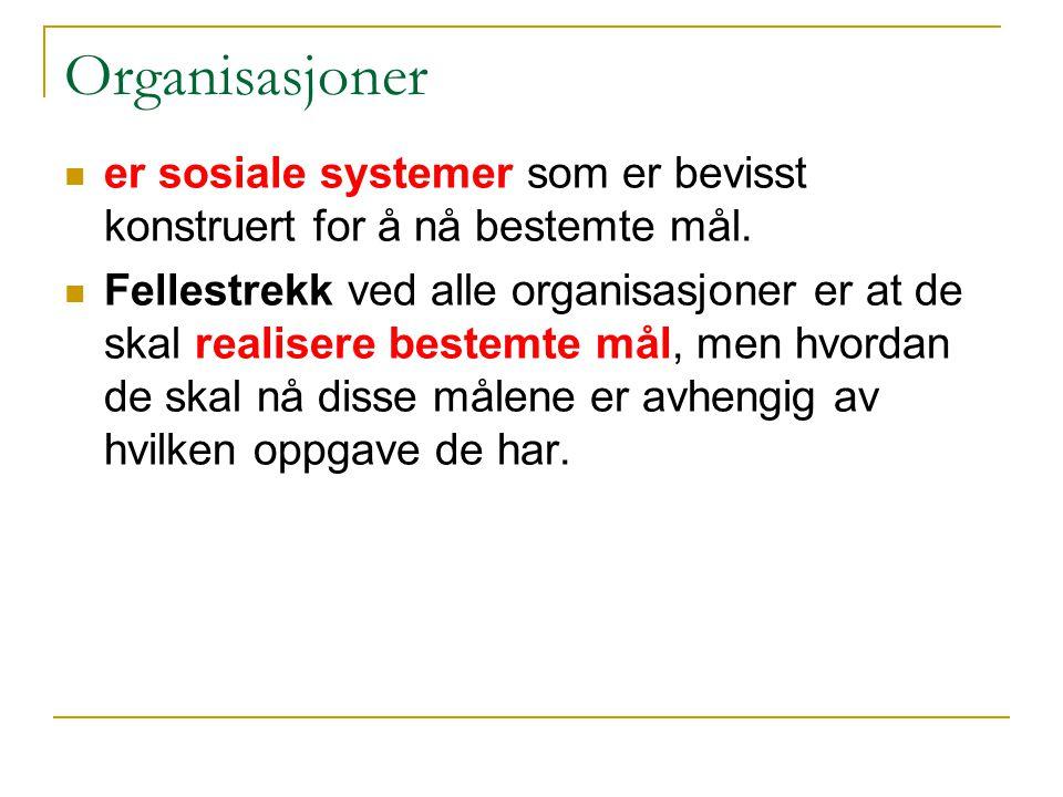 Organisasjoner er sosiale systemer som er bevisst konstruert for å nå bestemte mål.