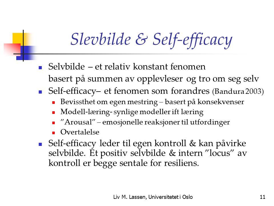 Liv M. Lassen, Universitetet i Oslo11 Slevbilde & Self-efficacy Selvbilde – et relativ konstant fenomen basert på summen av opplevleser og tro om seg