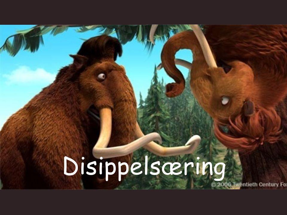 Disippelsæring