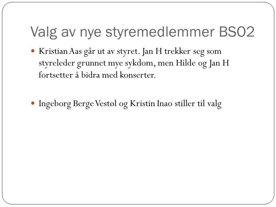 Valg av nye styremedlemmer BSO2 Kristian Aas går ut av styret. Jan H trekker seg som styreleder grunnet mye sykdom, men Hilde og Jan H fortsetter å bi