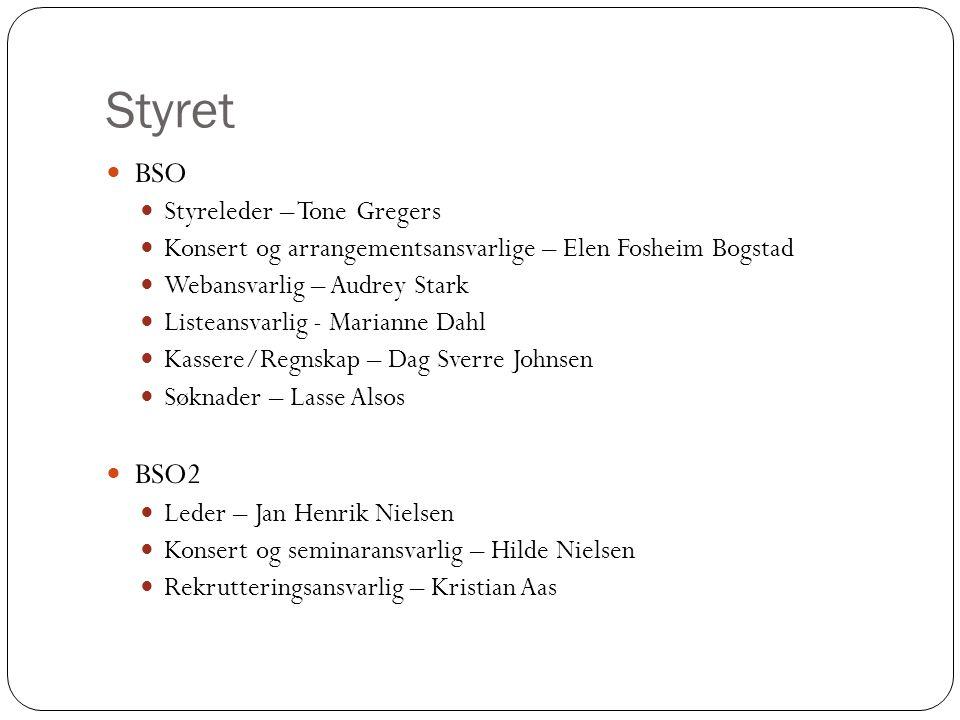 Styrets arbeid 7 møter ila 2014 Kristin Sæther har deltatt på 4 Lærermøte i februar Bloggen: vår viktigste informasjonskanal.