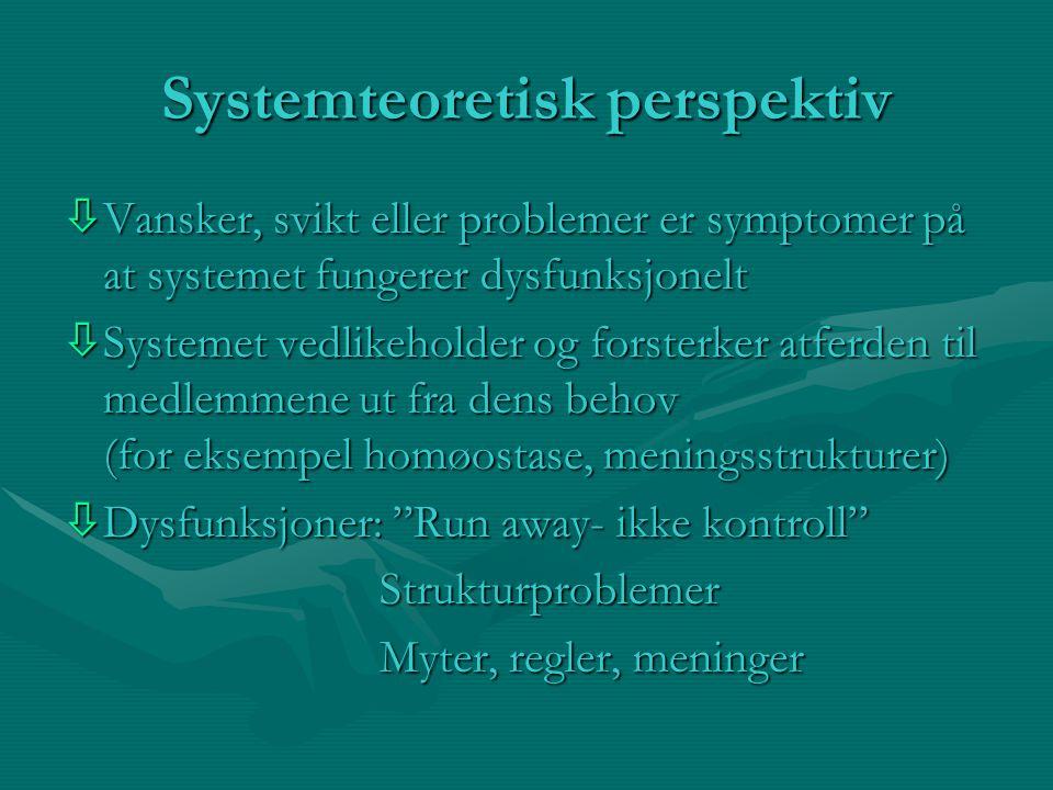 Systemteoretisk perspektiv òVansker, svikt eller problemer er symptomer på at systemet fungerer dysfunksjonelt òSystemet vedlikeholder og forsterker atferden til medlemmene ut fra dens behov (for eksempel homøostase, meningsstrukturer) òDysfunksjoner: Run away- ikke kontroll Strukturproblemer Myter, regler, meninger