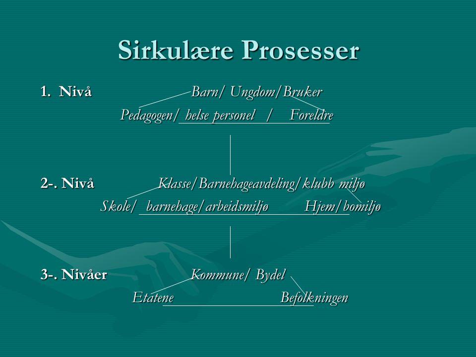 Sirkulære Prosesser 1.