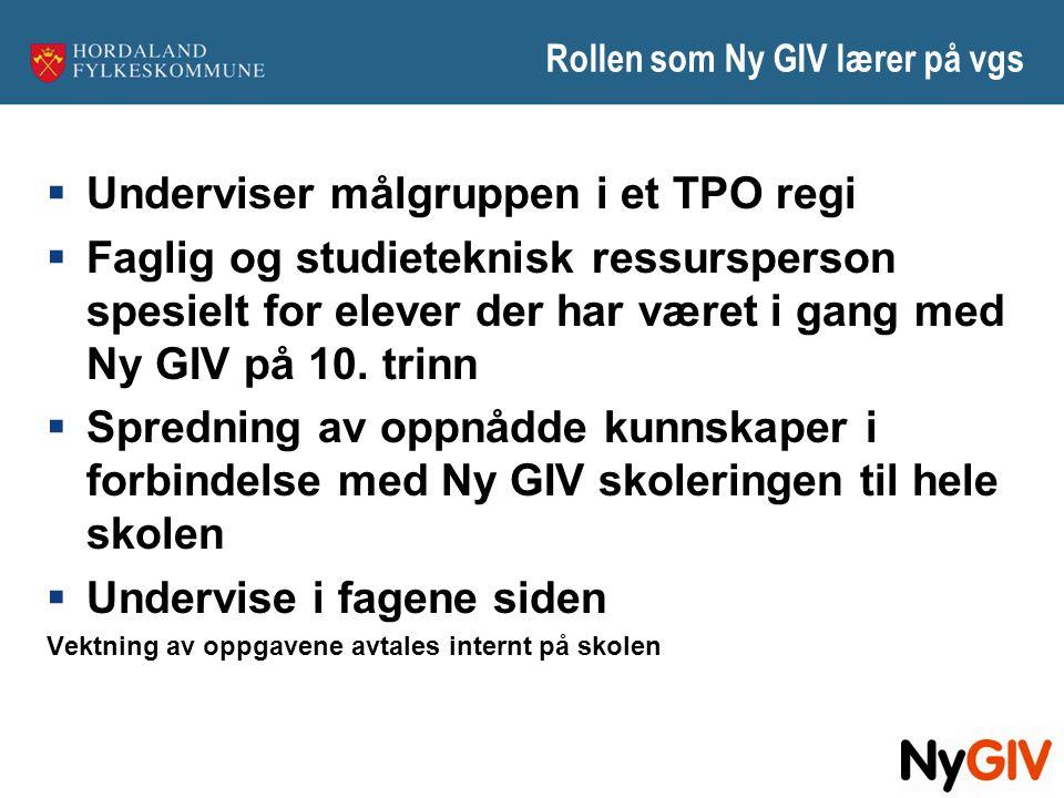 Rollen som Ny GIV lærer på vgs  Underviser målgruppen i et TPO regi  Faglig og studieteknisk ressursperson spesielt for elever der har været i gang
