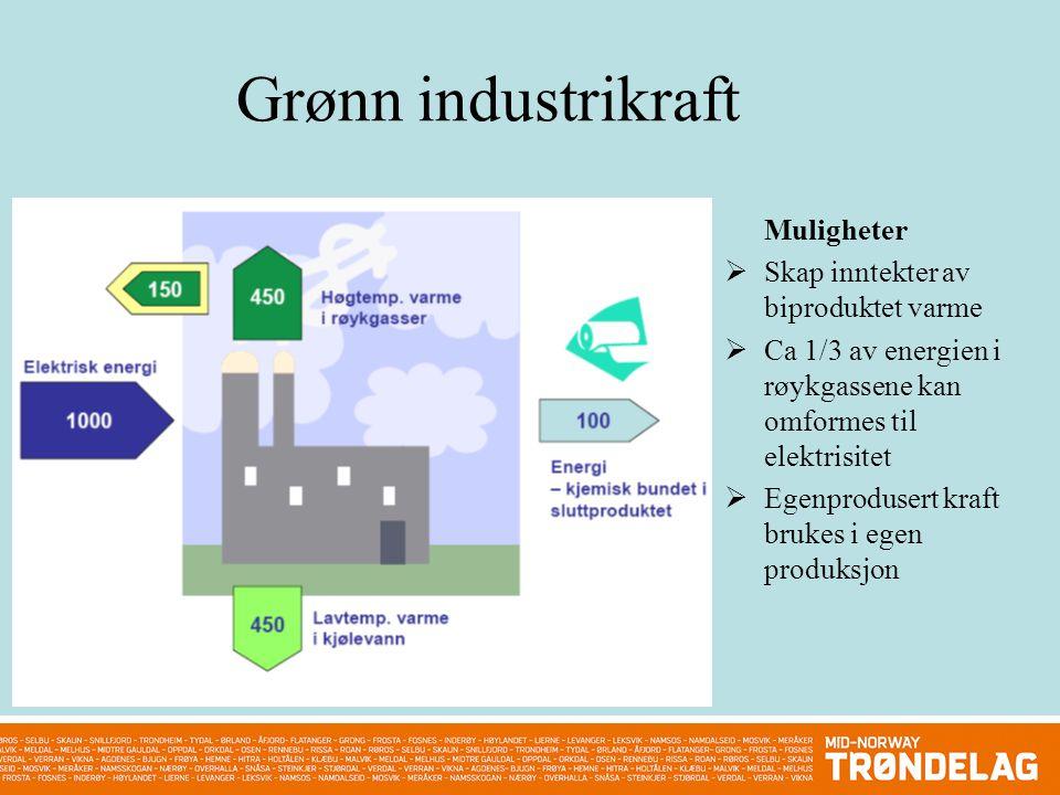 Grønn industrikraft Muligheter  Skap inntekter av biproduktet varme  Ca 1/3 av energien i røykgassene kan omformes til elektrisitet  Egenprodusert kraft brukes i egen produksjon