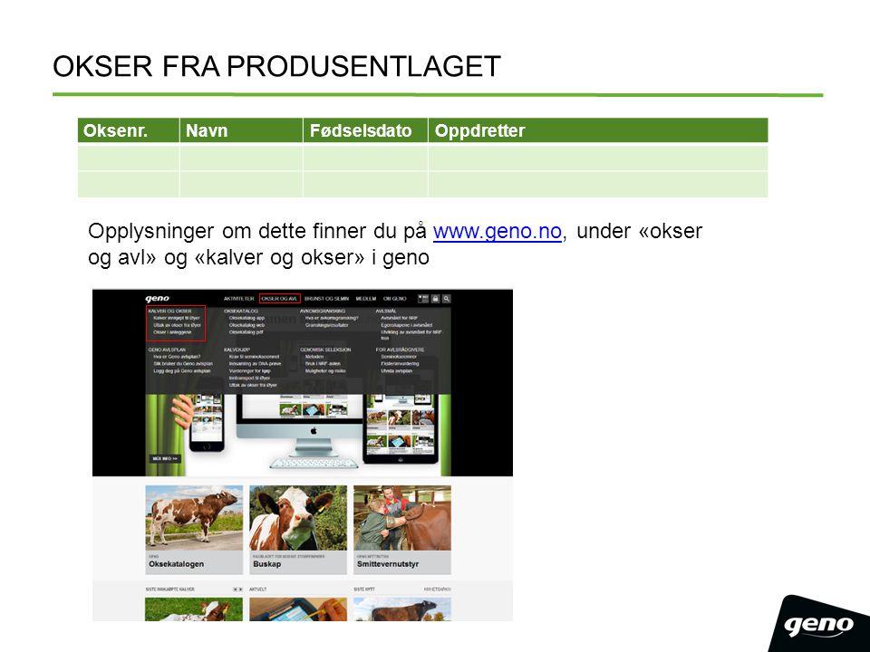 OKSER FRA PRODUSENTLAGET Oksenr.NavnFødselsdatoOppdretter Opplysninger om dette finner du på www.geno.no, under «okser og avl» og «kalver og okser» i