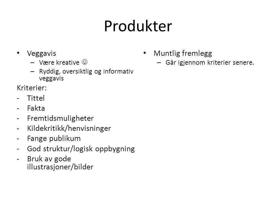 Produkter Veggavis – Være kreative – Ryddig, oversiktlig og informativ veggavis Kriterier: -Tittel -Fakta -Fremtidsmuligheter -Kildekritikk/henvisning