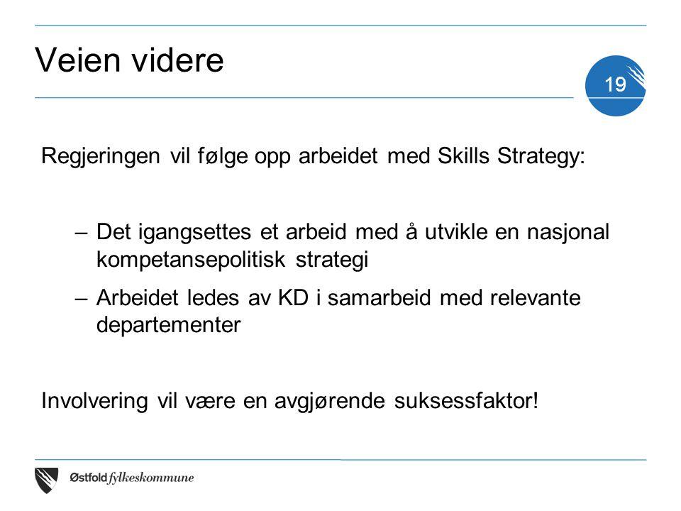 Veien videre Regjeringen vil følge opp arbeidet med Skills Strategy: –Det igangsettes et arbeid med å utvikle en nasjonal kompetansepolitisk strategi