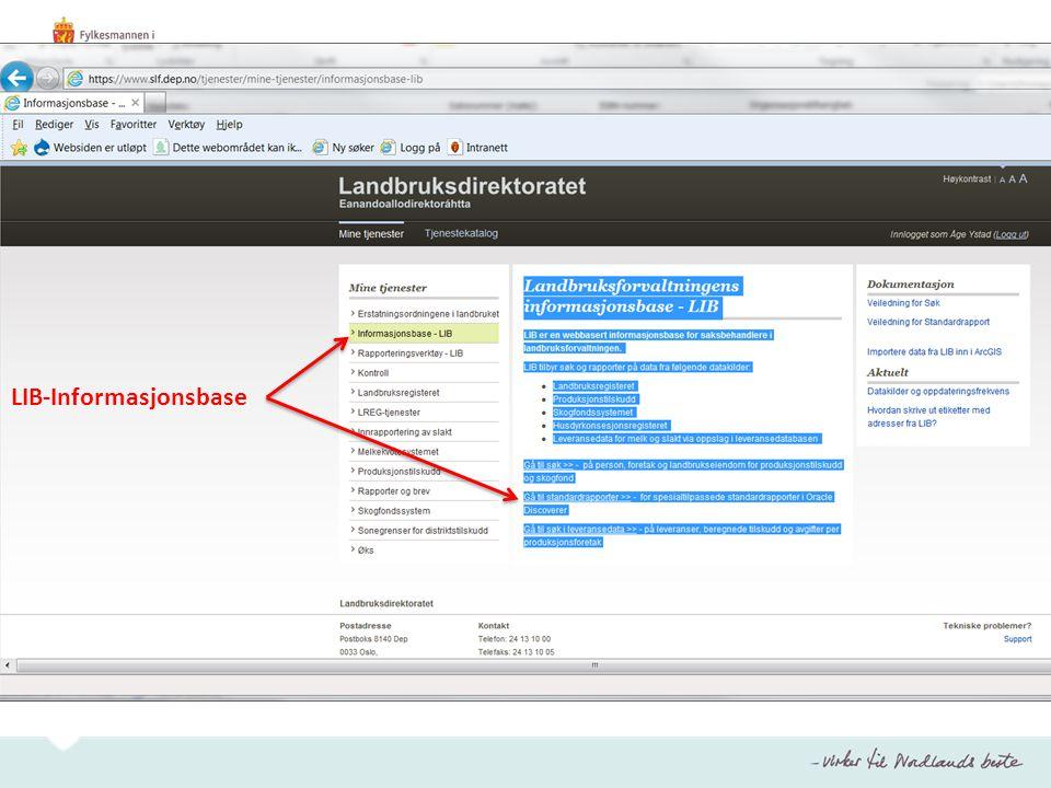 LIB-Informasjonsbase