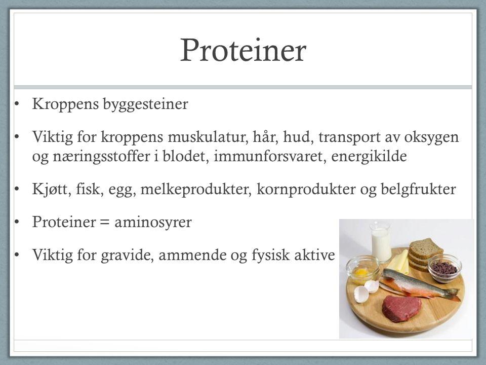 Proteiner Kroppens byggesteiner Viktig for kroppens muskulatur, hår, hud, transport av oksygen og næringsstoffer i blodet, immunforsvaret, energikilde
