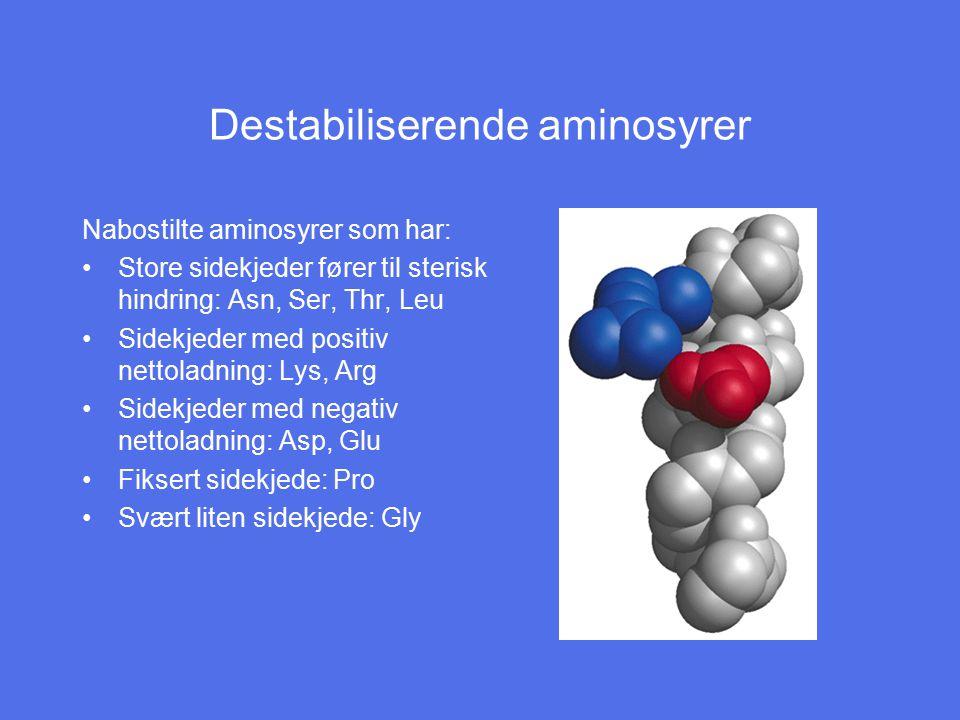 Destabiliserende aminosyrer Nabostilte aminosyrer som har: Store sidekjeder fører til sterisk hindring: Asn, Ser, Thr, Leu Sidekjeder med positiv nett