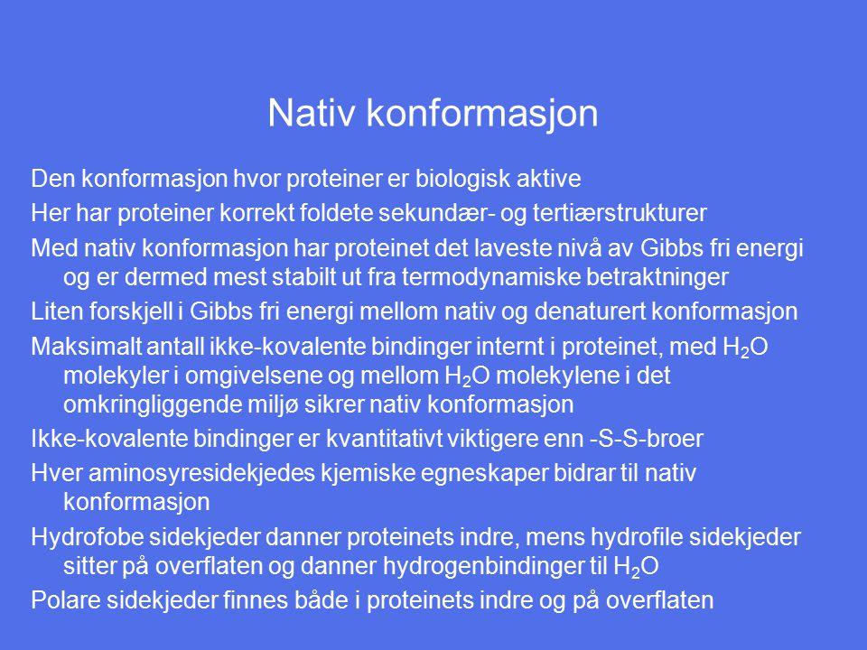 Nativ konformasjon Den konformasjon hvor proteiner er biologisk aktive Her har proteiner korrekt foldete sekundær- og tertiærstrukturer Med nativ konf