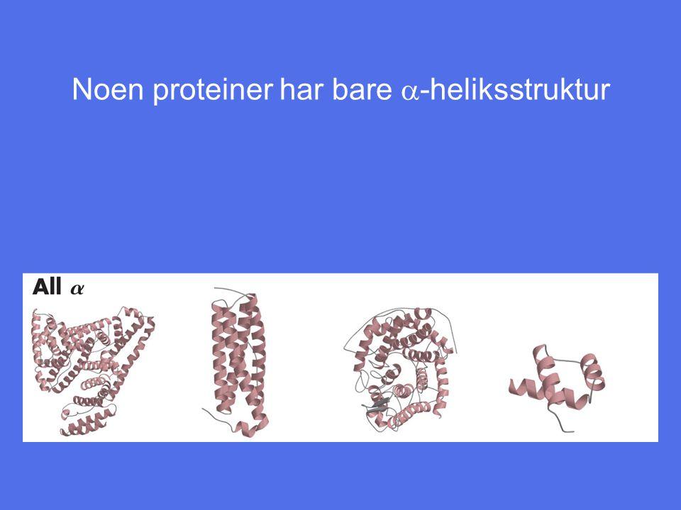 Noen proteiner har bare  -heliksstruktur