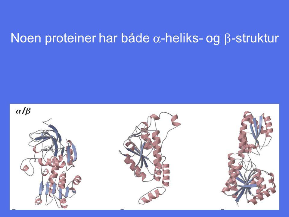 Noen proteiner har både  -heliks- og  -struktur