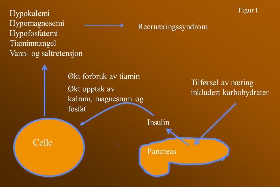 C C Celle Figur 1 Pancreas Tilførsel av næring inkludert karbohydrater Insulin Økt opptak av kalium, magnesium og fosfat Hypokalemi Hypomagnesemi Hypo