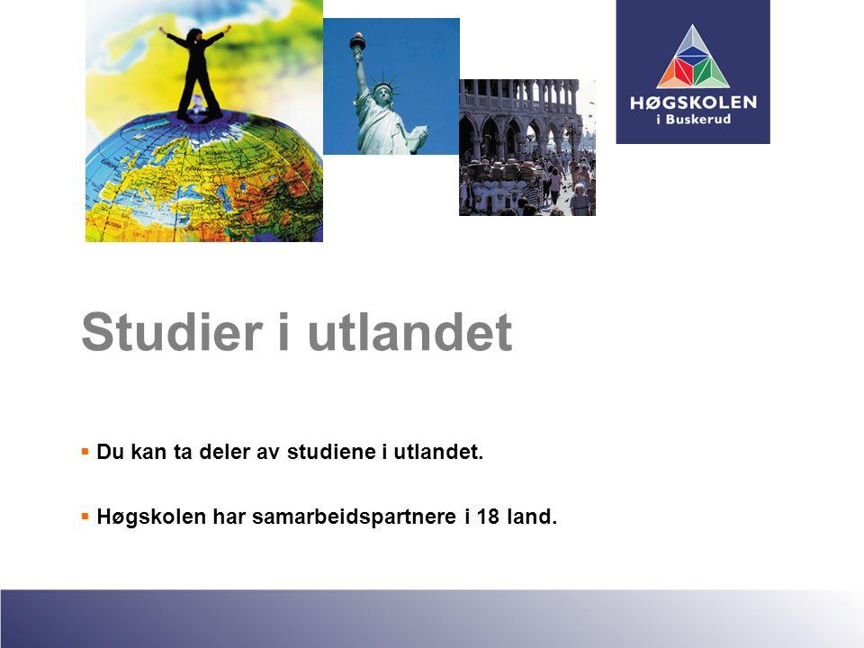 Studier i utlandet  Du kan ta deler av studiene i utlandet.  Høgskolen har samarbeidspartnere i 18 land.