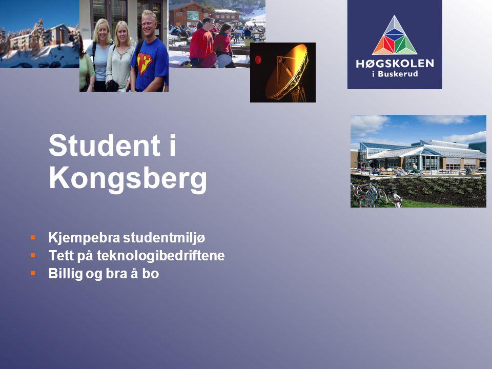 Student i Kongsberg  Kjempebra studentmiljø  Tett på teknologibedriftene  Billig og bra å bo
