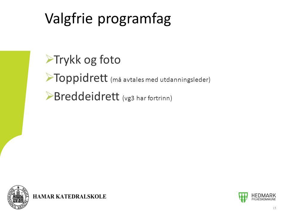 Valgfrie programfag 15  Trykk og foto  Toppidrett (må avtales med utdanningsleder)  Breddeidrett (vg3 har fortrinn)