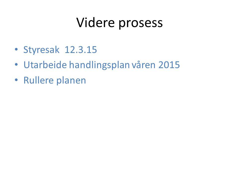 Videre prosess Styresak 12.3.15 Utarbeide handlingsplan våren 2015 Rullere planen