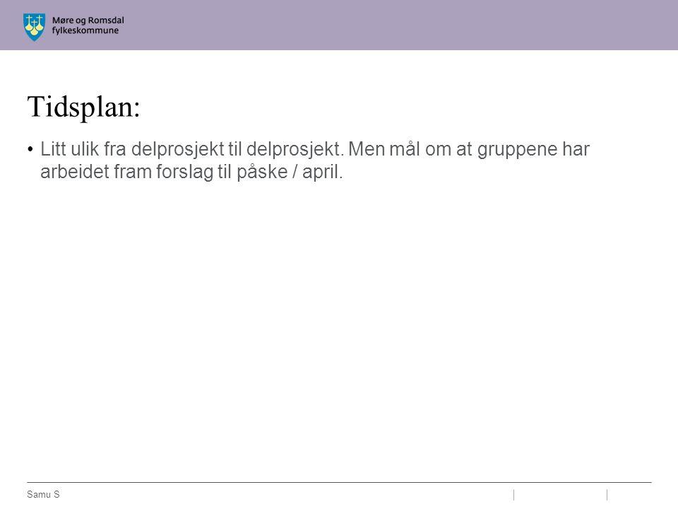 Tidsplan: Litt ulik fra delprosjekt til delprosjekt. Men mål om at gruppene har arbeidet fram forslag til påske / april. Samu S