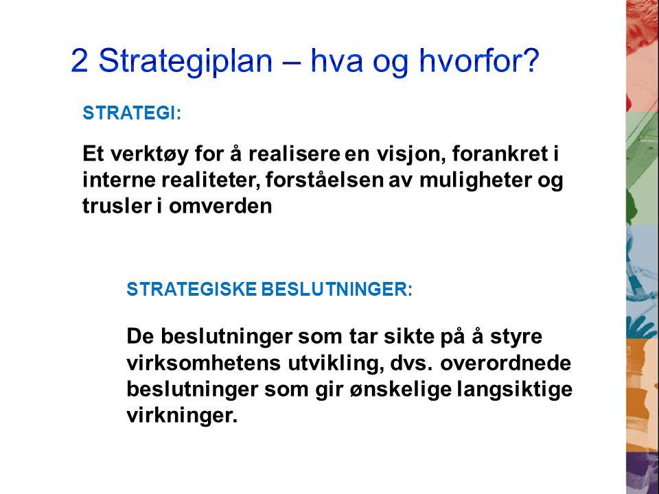 STRATEGISKE BESLUTNINGER: De beslutninger som tar sikte på å styre virksomhetens utvikling, dvs.