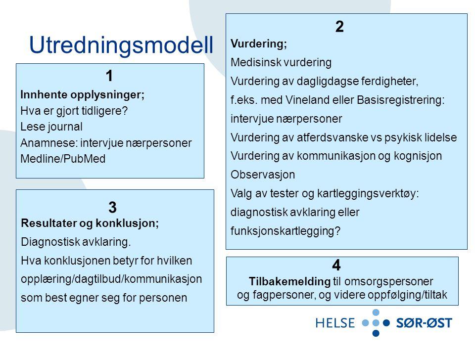 Utredningsmodell 1 Innhente opplysninger; Hva er gjort tidligere.