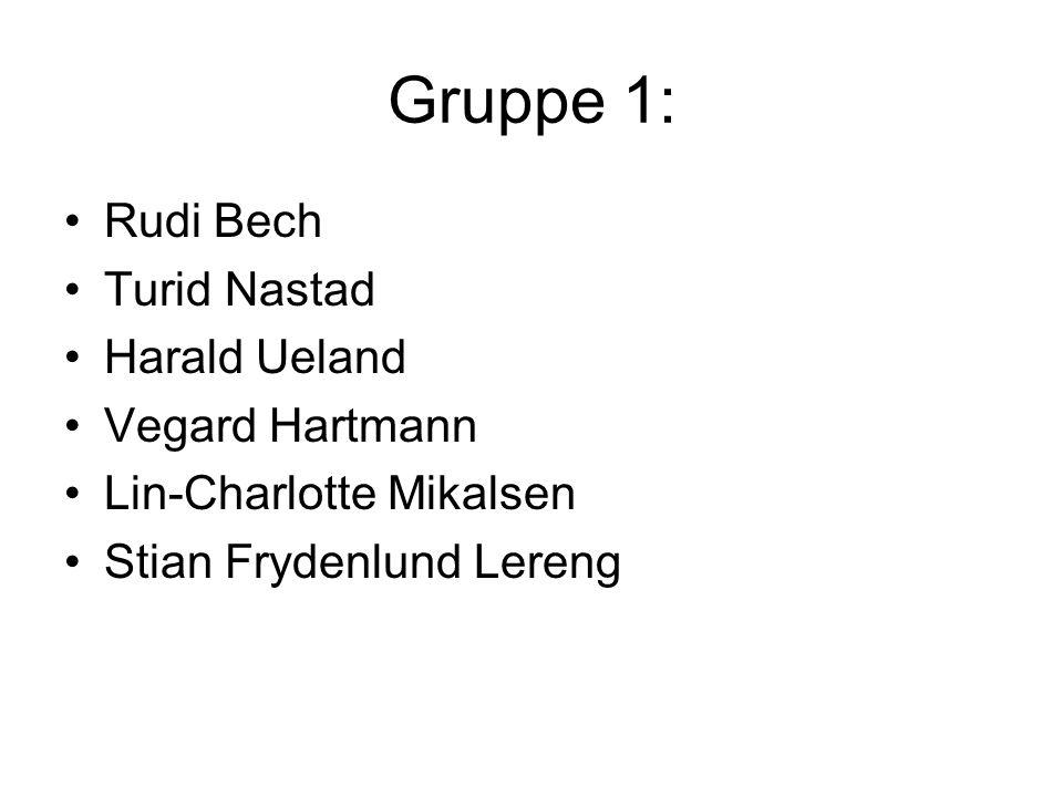 Gruppe 1: Rudi Bech Turid Nastad Harald Ueland Vegard Hartmann Lin-Charlotte Mikalsen Stian Frydenlund Lereng