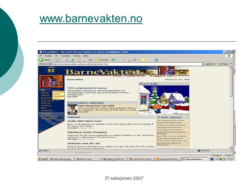 IT-seksjonen 2007 www.safesurf.com