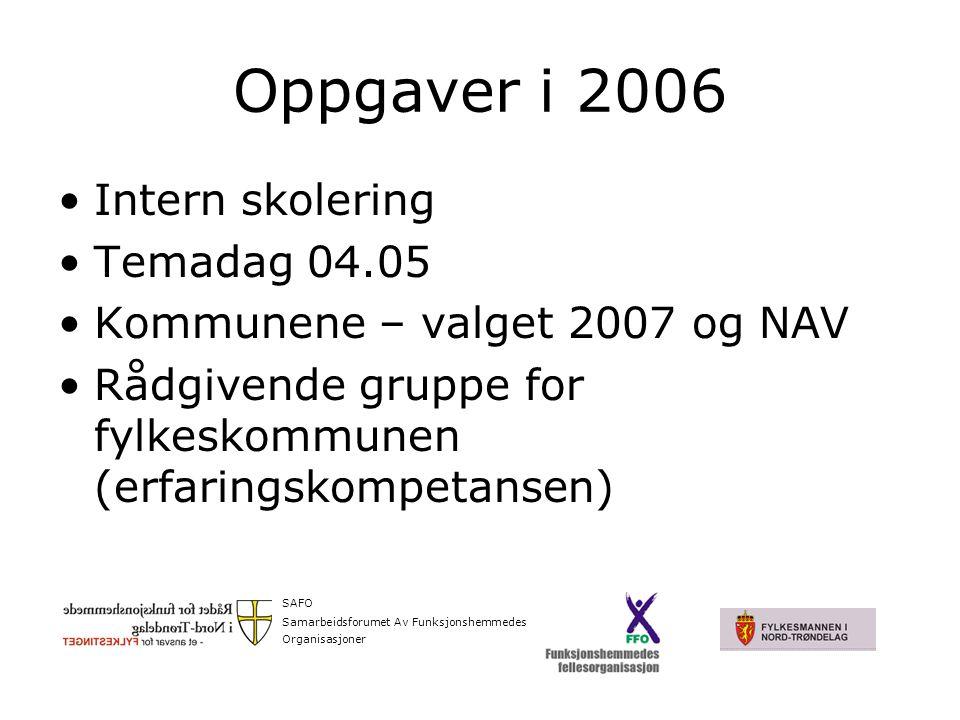 Oppgaver i 2006 Intern skolering Temadag 04.05 Kommunene – valget 2007 og NAV Rådgivende gruppe for fylkeskommunen (erfaringskompetansen) SAFO Samarbeidsforumet Av Funksjonshemmedes Organisasjoner