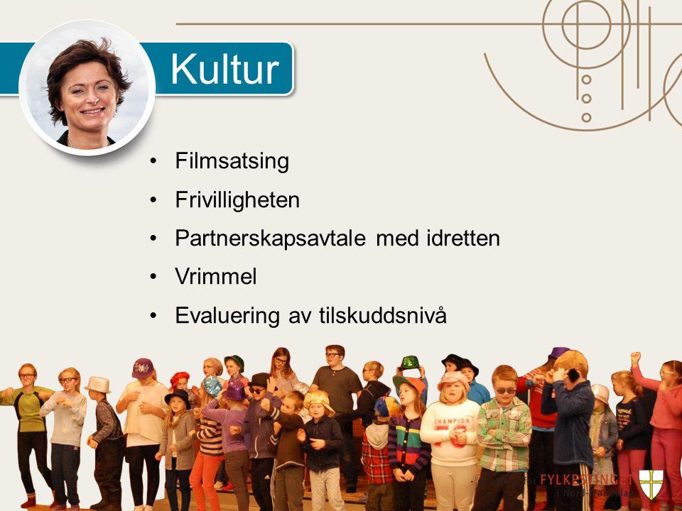 Kultur Filmsatsing Frivilligheten Partnerskapsavtale med idretten Vrimmel Evaluering av tilskuddsnivå