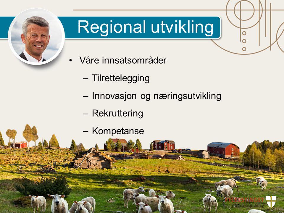 Regional utvikling Våre innsatsområder –Tilrettelegging –Innovasjon og næringsutvikling –Rekruttering –Kompetanse