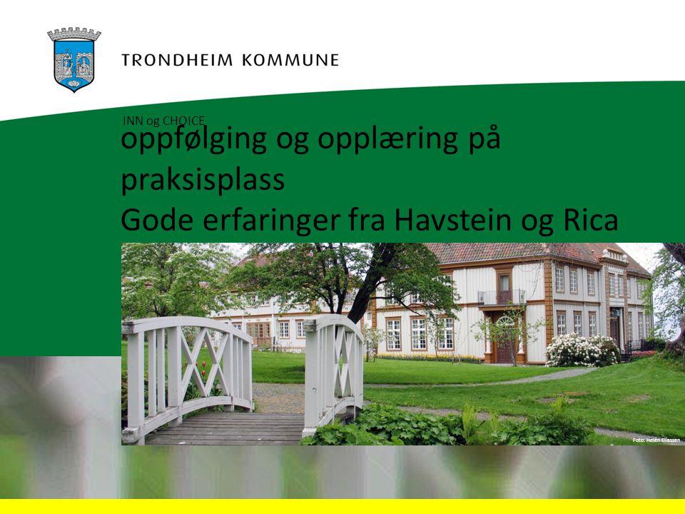 Foto: Helén Eliassen oppfølging og opplæring på praksisplass Gode erfaringer fra Havstein og Rica INN og CHOICE