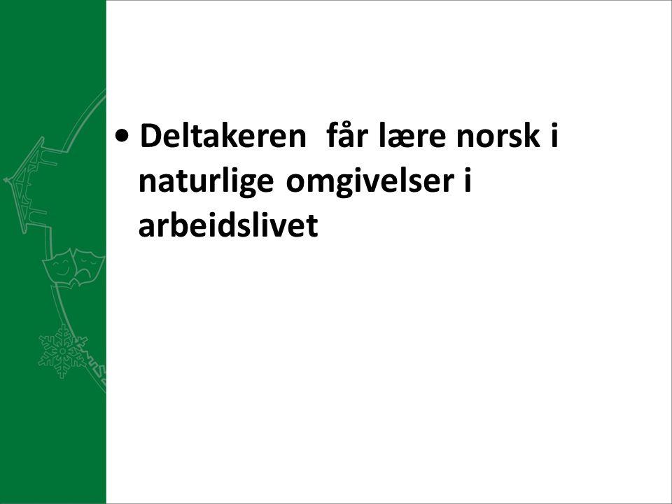 Deltakeren får lære norsk i naturlige omgivelser i arbeidslivet