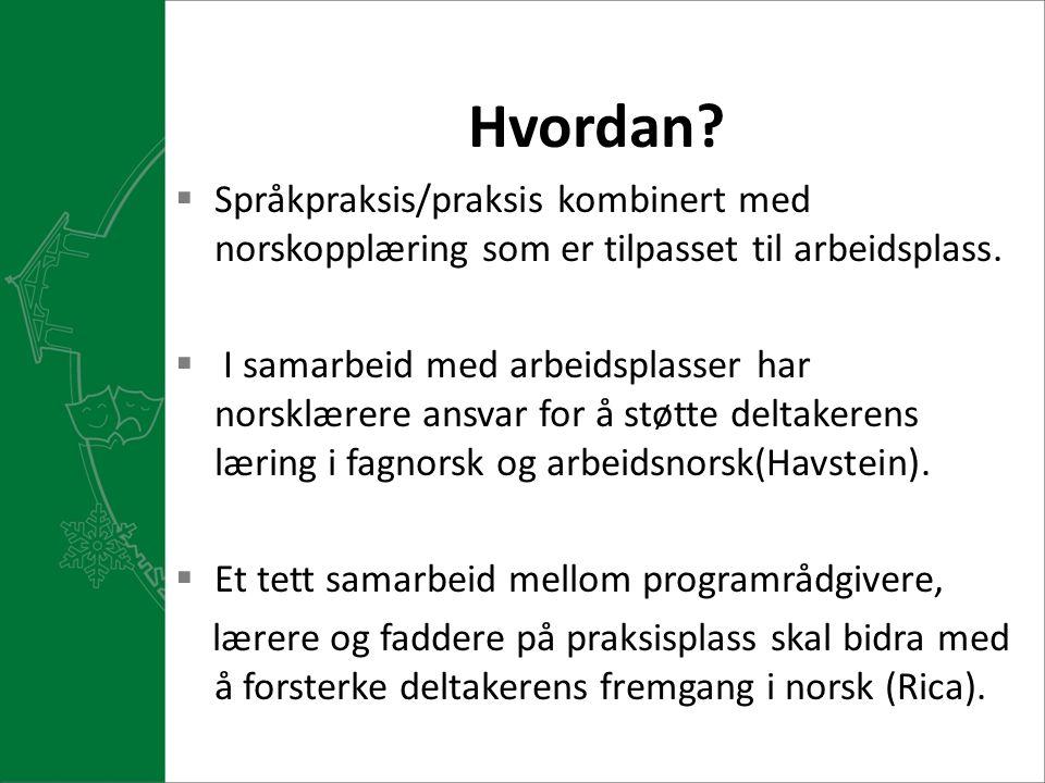 Hvordan?  Språkpraksis/praksis kombinert med norskopplæring som er tilpasset til arbeidsplass.  I samarbeid med arbeidsplasser har norsklærere ansva