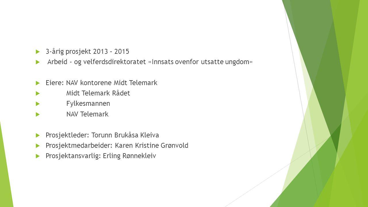  3-årig prosjekt 2013 – 2015  Arbeid - og velferdsdirektoratet «Innsats ovenfor utsatte ungdom»  Eiere: NAV kontorene Midt Telemark  Midt Telemark