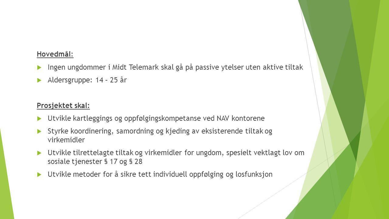 Hovedmål:  Ingen ungdommer i Midt Telemark skal gå på passive ytelser uten aktive tiltak  Aldersgruppe: 14 – 25 år Prosjektet skal:  Utvikle kartle