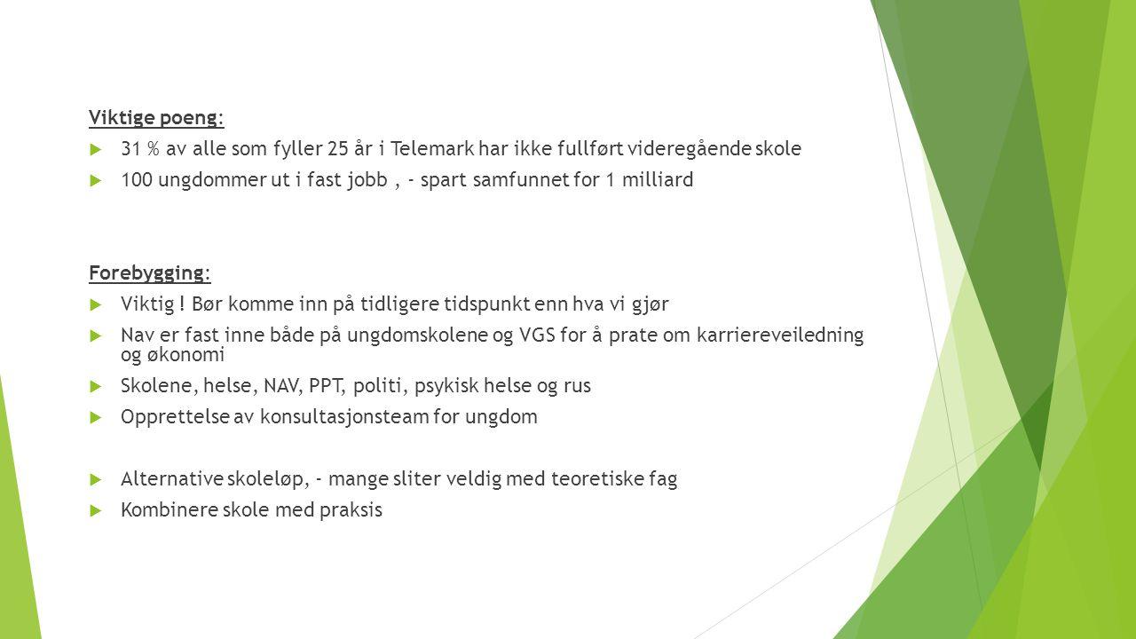 Viktige poeng:  31 % av alle som fyller 25 år i Telemark har ikke fullført videregående skole  100 ungdommer ut i fast jobb, - spart samfunnet for 1