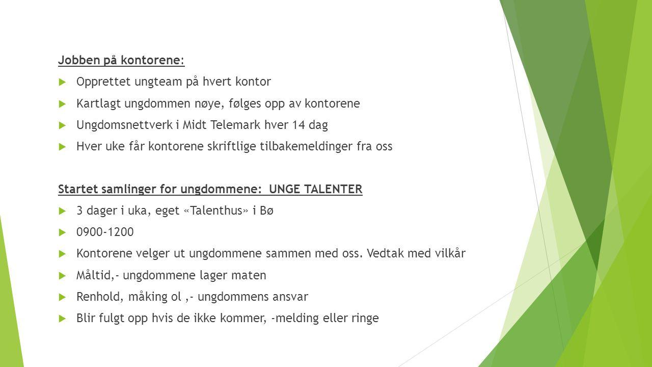 Jobben på kontorene:  Opprettet ungteam på hvert kontor  Kartlagt ungdommen nøye, følges opp av kontorene  Ungdomsnettverk i Midt Telemark hver 14