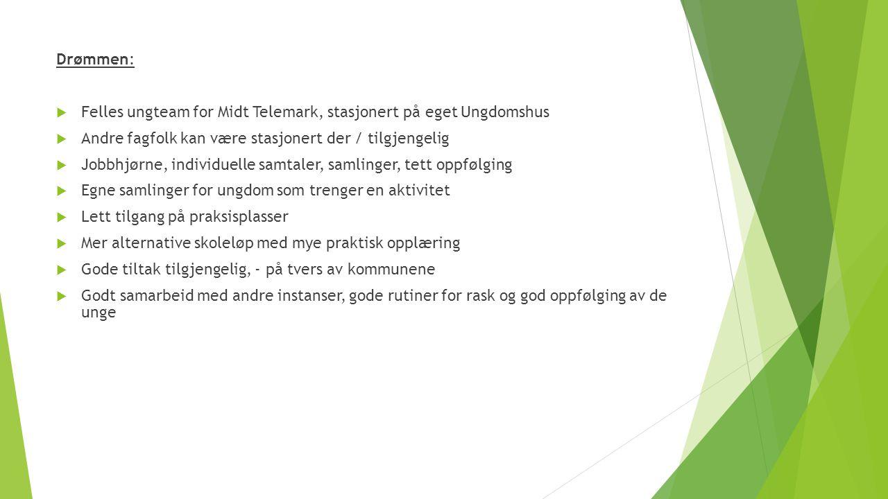 Drømmen:  Felles ungteam for Midt Telemark, stasjonert på eget Ungdomshus  Andre fagfolk kan være stasjonert der / tilgjengelig  Jobbhjørne, indivi