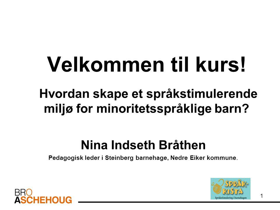 Velkommen til kurs! Hvordan skape et språkstimulerende miljø for minoritetsspråklige barn? Nina Indseth Bråthen Pedagogisk leder i Steinberg barnehage
