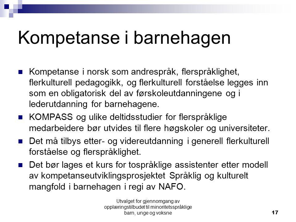 Kompetanse i barnehagen Kompetanse i norsk som andrespråk, flerspråklighet, flerkulturell pedagogikk, og flerkulturell forståelse legges inn som en obligatorisk del av førskoleutdanningene og i lederutdanning for barnehagene.