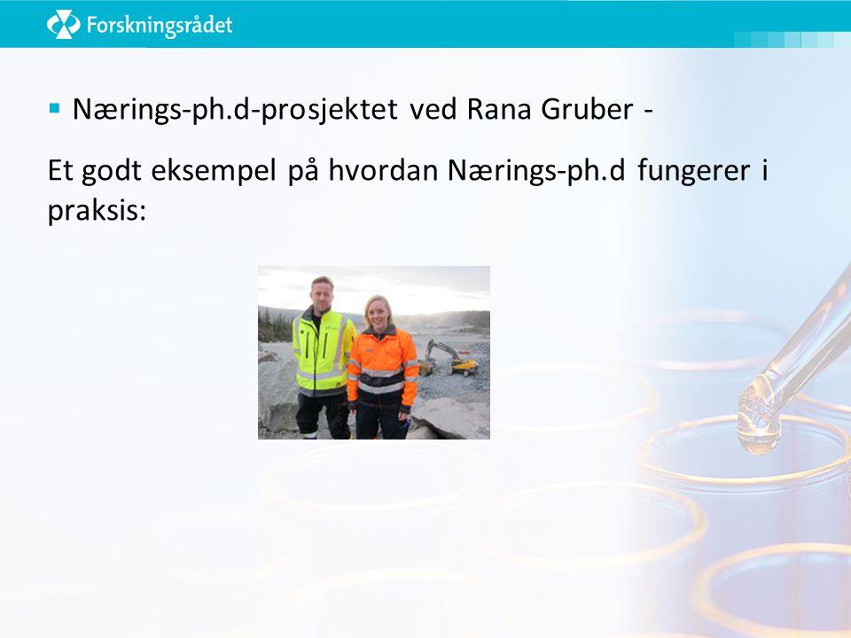  Nærings-ph.d-prosjektet ved Rana Gruber - Et godt eksempel på hvordan Nærings-ph.d fungerer i praksis: