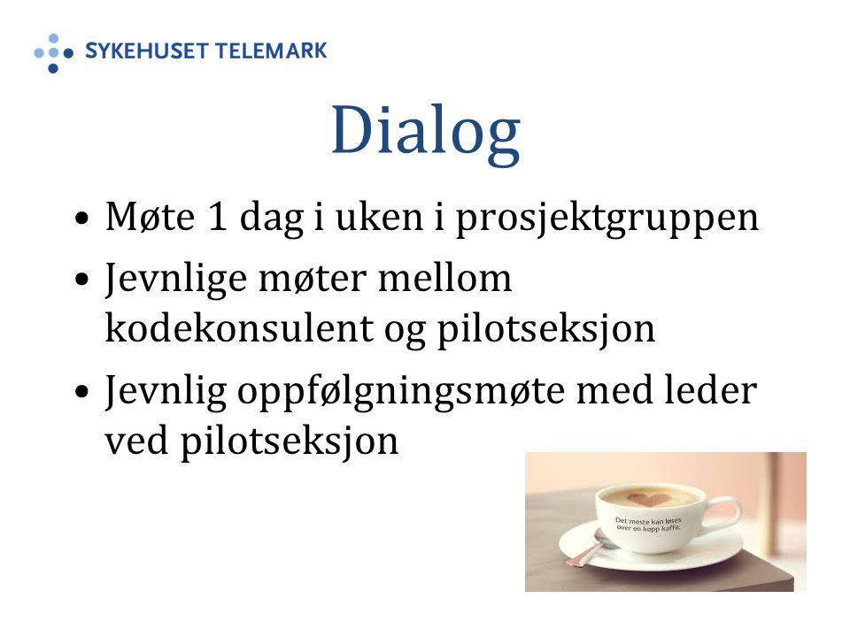 Dialog Møte 1 dag i uken i prosjektgruppen Jevnlige møter mellom kodekonsulent og pilotseksjon Jevnlig oppfølgningsmøte med leder ved pilotseksjon