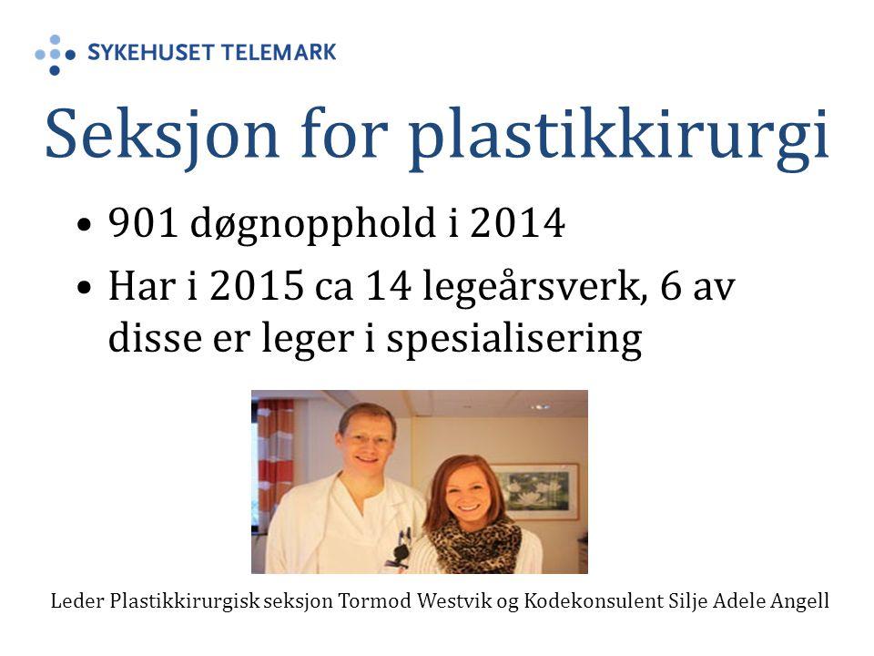 Seksjon for plastikkirurgi 901 døgnopphold i 2014 Har i 2015 ca 14 legeårsverk, 6 av disse er leger i spesialisering Leder Plastikkirurgisk seksjon To
