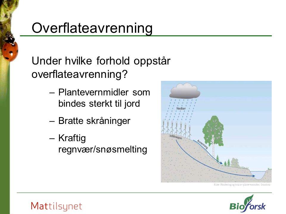 Overflateavrenning Under hvilke forhold oppstår overflateavrenning? –Plantevernmidler som bindes sterkt til jord –Bratte skråninger –Kraftig regnvær/s