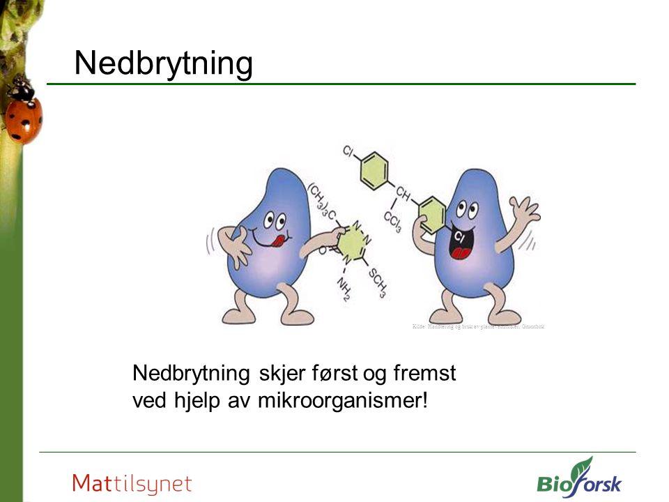 Nedbrytning Nedbrytning skjer først og fremst ved hjelp av mikroorganismer! Kilde: Handtering og bruk av plantevernmidler, Grunnbok