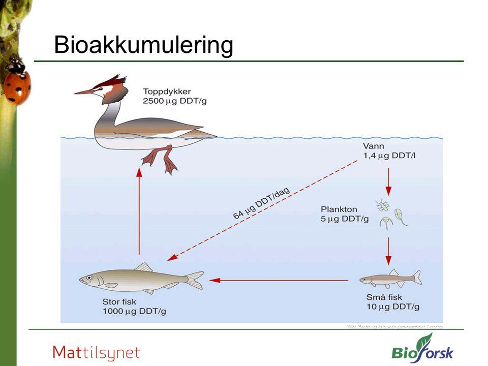 Bioakkumulering Kilde: Handtering og bruk av plantevernmidler, Grunnbok