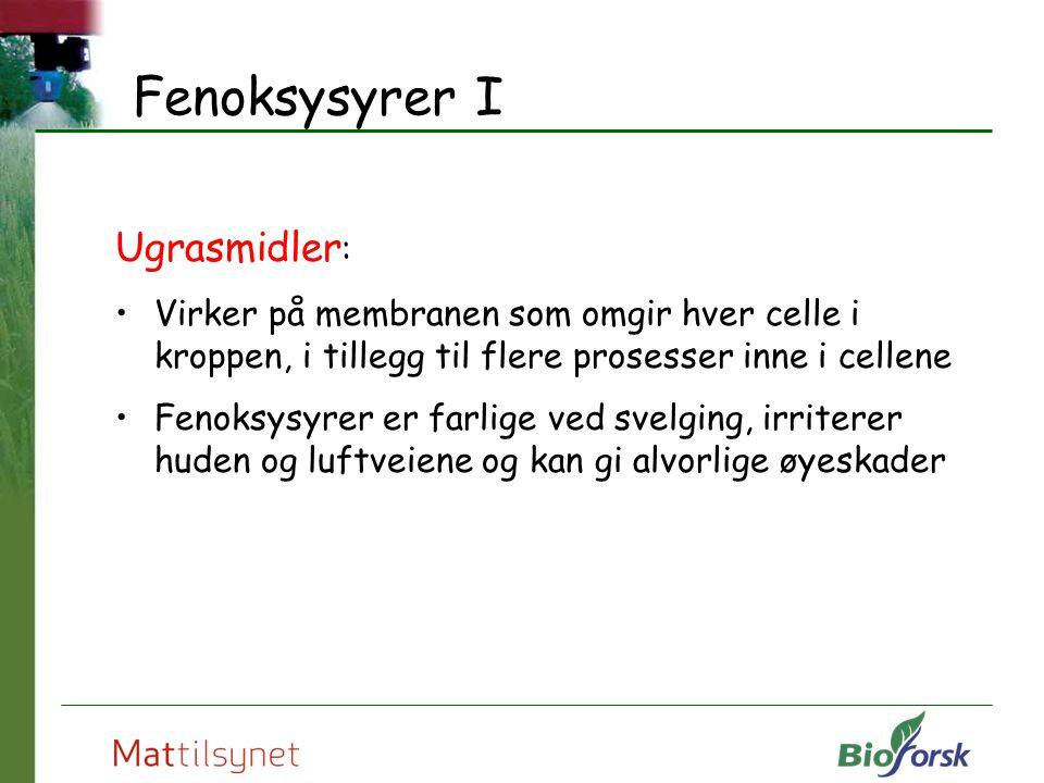 Fenoksysyrer I Ugrasmidler : Virker på membranen som omgir hver celle i kroppen, i tillegg til flere prosesser inne i cellene Fenoksysyrer er farlige