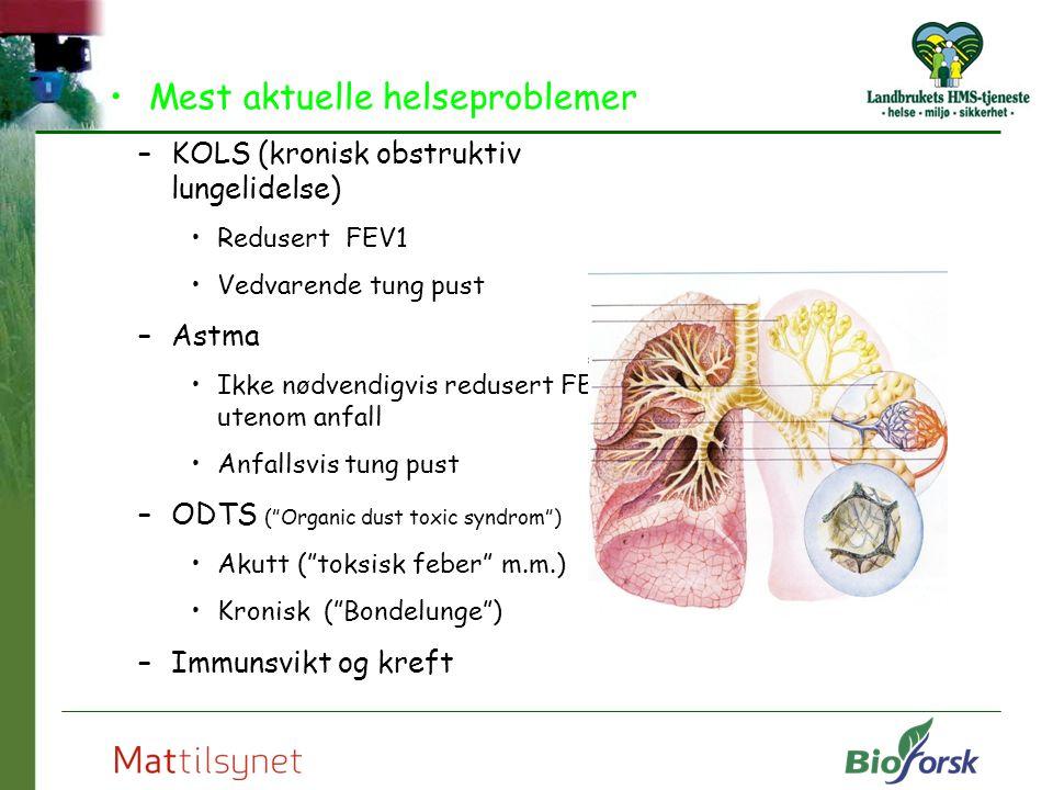 Mest aktuelle helseproblemer –KOLS (kronisk obstruktiv lungelidelse) Redusert FEV1 Vedvarende tung pust –Astma Ikke nødvendigvis redusert FEV1 utenom