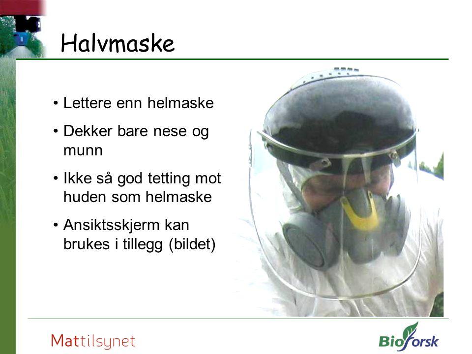 Halvmaske Lettere enn helmaske Dekker bare nese og munn Ikke så god tetting mot huden som helmaske Ansiktsskjerm kan brukes i tillegg (bildet) Foto: N